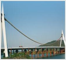 安通良品桥梁橡胶支座 板式盆式橡胶支座工程案例9